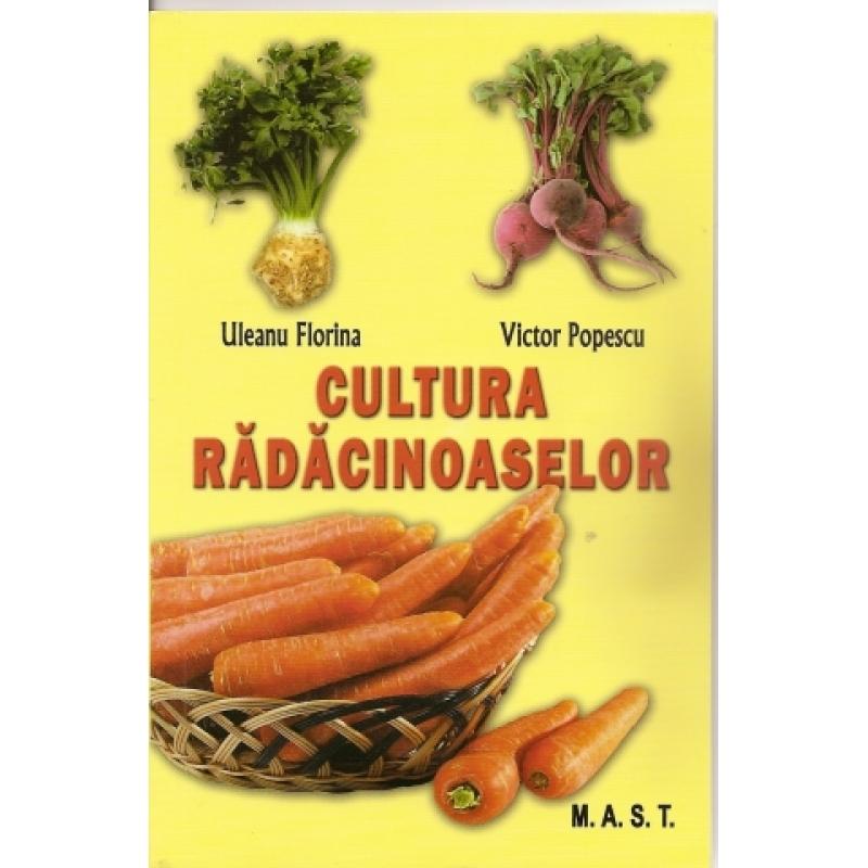 Cultura radacinoaselor(morcov,telina,sfecla rosie,pastarnac,napi comestibili,ridichi,hrean). 1