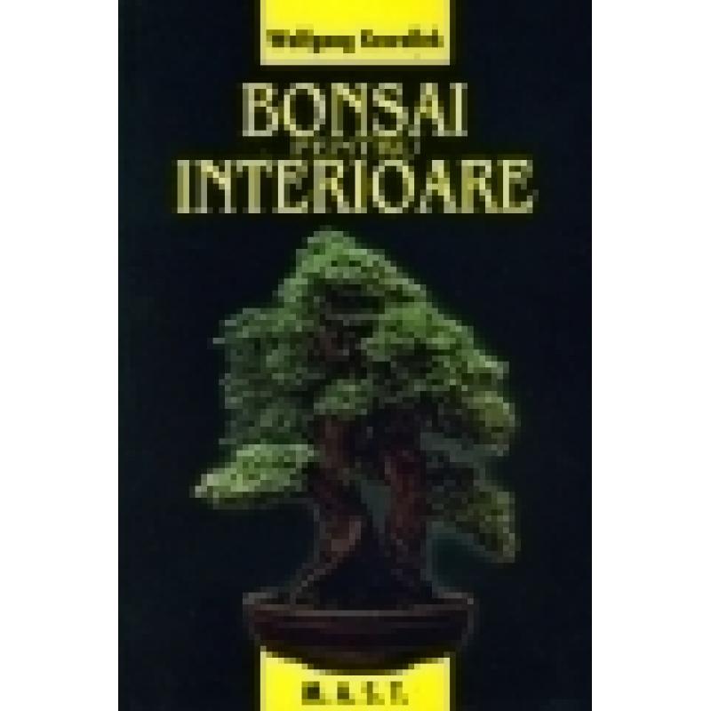 Bonsai pentru interioare 1