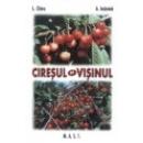 Ciresul si visinul ed.4 1