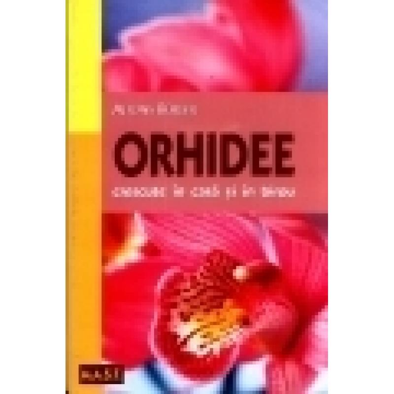 Orhidee crescute in casa si in birou 1