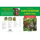 Plante cataratoare si arbusti murali 1